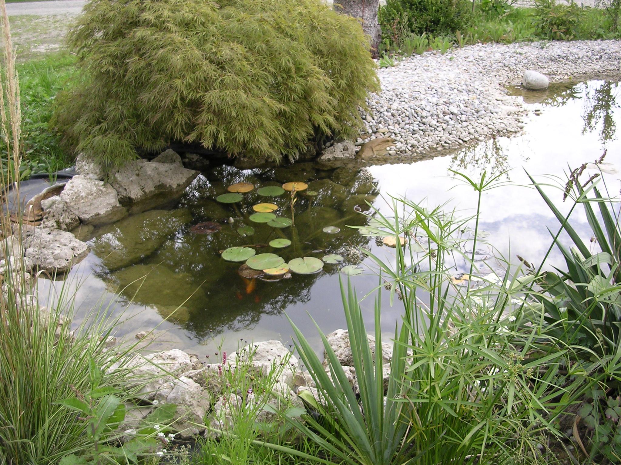 Gartenanlagen Zaubergarten Ried